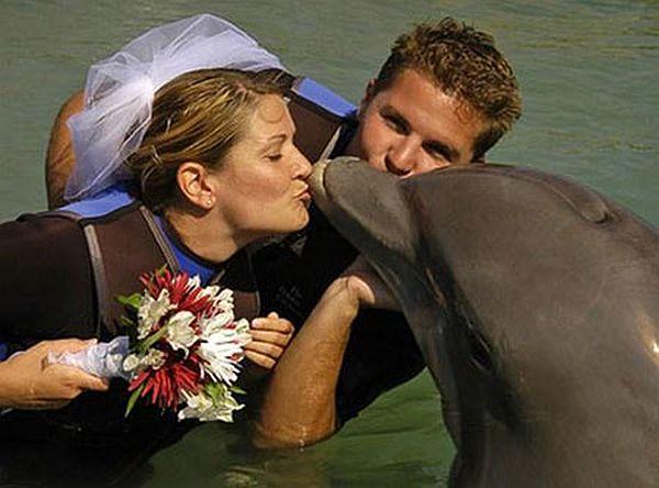 Sharon Tendler wanita yang menikah dengan seekor lumba lumba