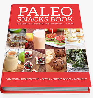 Paleo Healthy Snacks EBook
