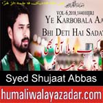 https://www.humaliwalyazadar.com/2018/09/syed-shujaat-abbas-nohay-2019.html