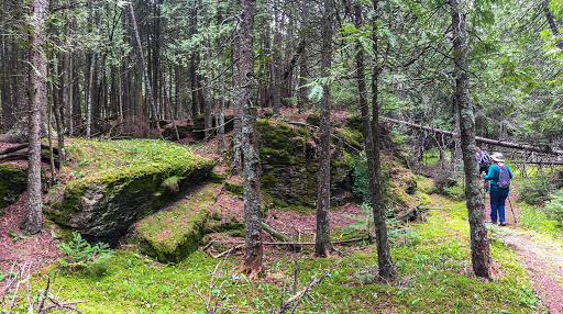 Old Quarry at Toft Point State Natural Area in Bailey's Harbor Door County