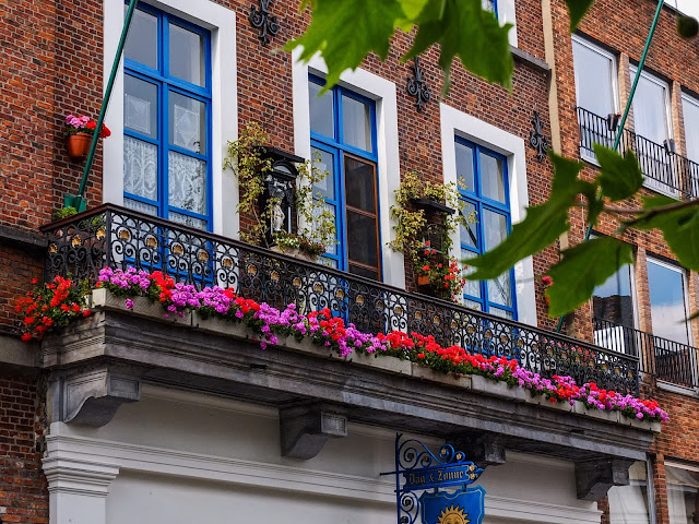 Blue windows in a red brick building with pink and red flowers decorating the balcony in Bruges.