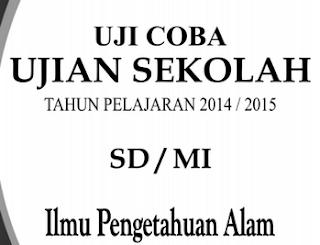 Soal Uji Coba UN SD Tahun Pelajaran 2014/2015 Mata Pelajaran Ilmu Pengetahuan Alam (IPA)