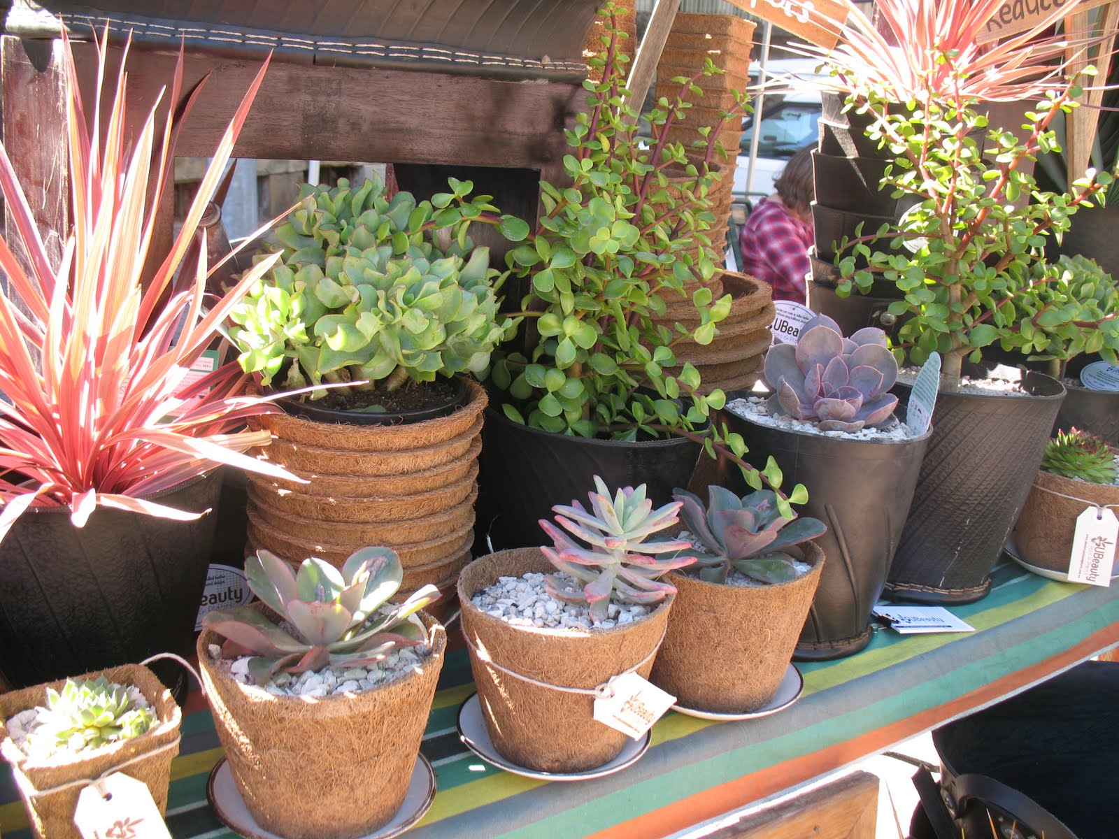 Ubeauty Pots And Plants Recycled Tyre Pots
