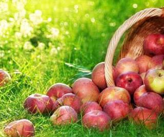 Mencegah Gigi Berlubang Dengan Makanan dan Minuman buah bolong