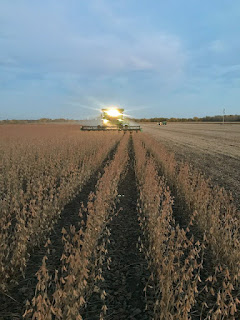 combine-soybeans