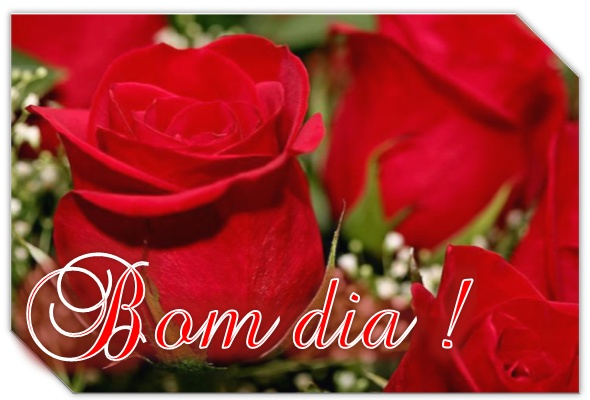 Bom Dia Romantico Para Celular: Imagens De Amor : 5 Imagens De Bom Dia Amor