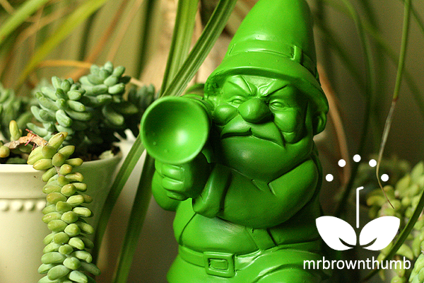 Green Army Man Garden Gnome Houseplants