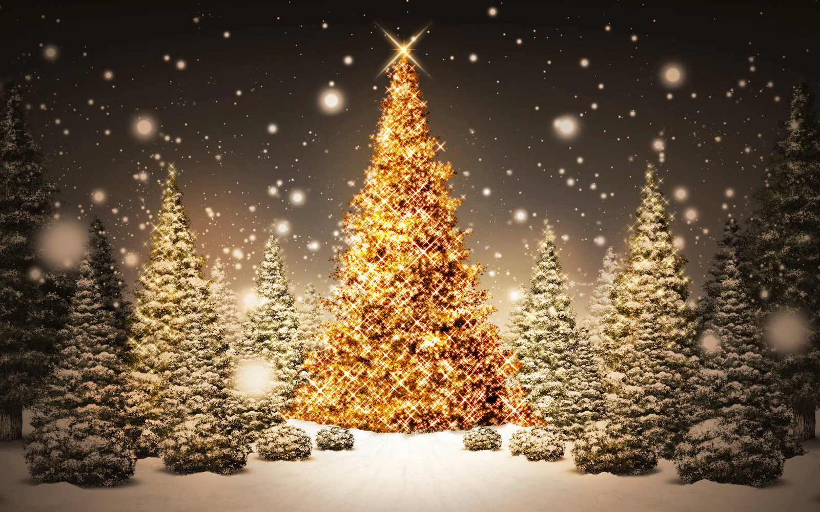 Best Desktop HD Wallpaper - Christmas lights wallpapers