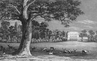 Bushy House from History of the life and reign  of William the Fourth by R Huish (1837)
