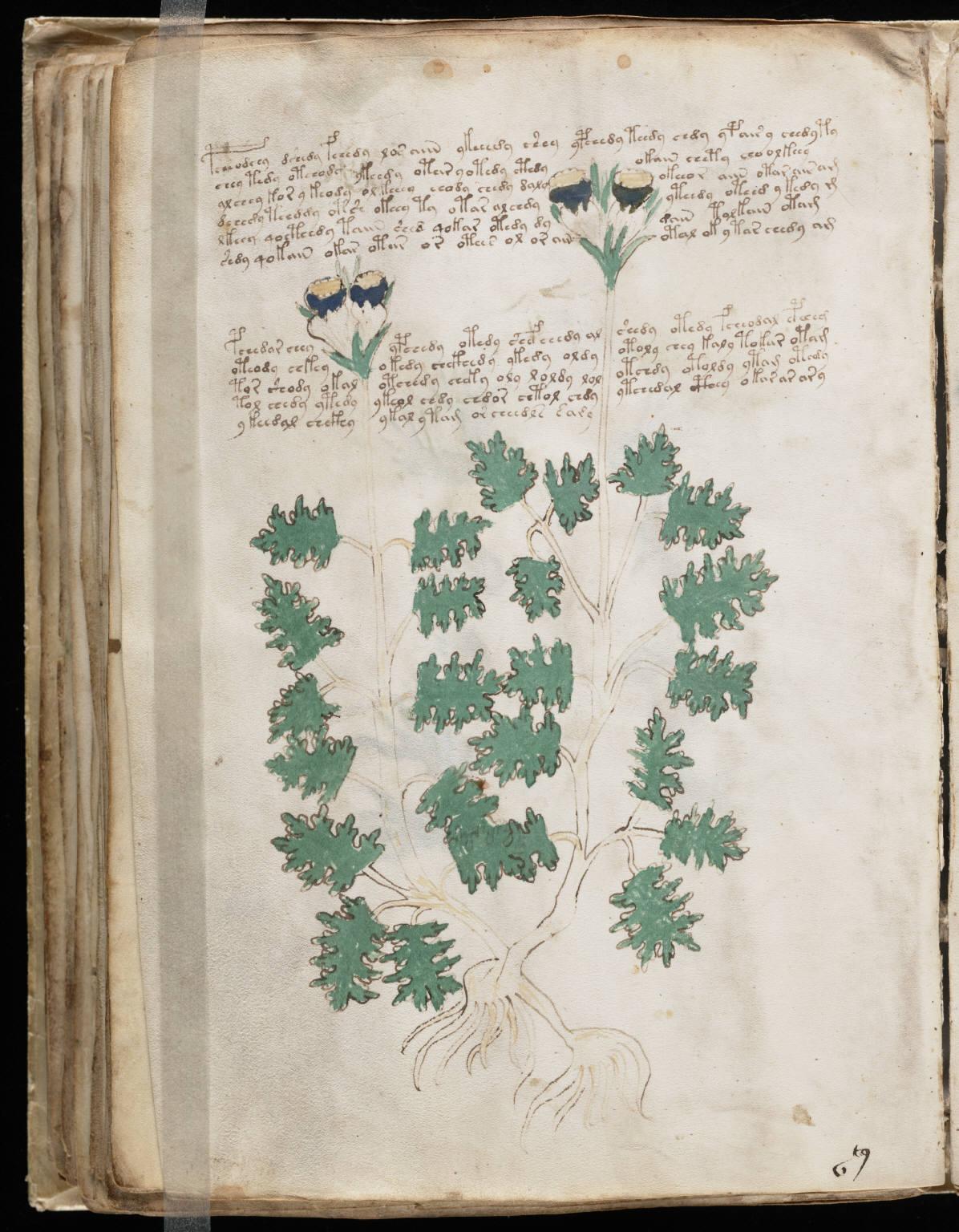 manuscrito094