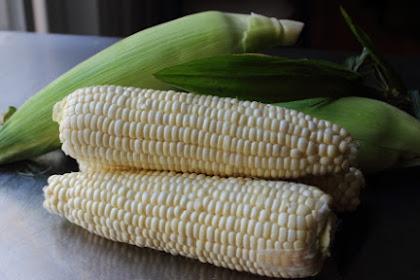 Next Up: Something amongst Corn