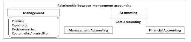 relationship between management and organization pdf