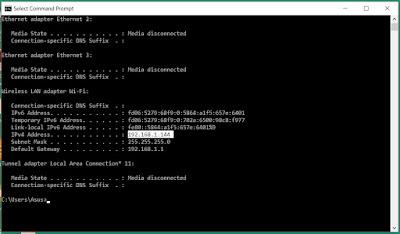 screenshot cmd ip address