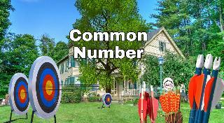 Common Number Teer - Shillong teer club , Bigteer Results, Teer Formula