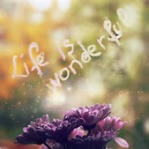 life is wonderful and you are worth it quote