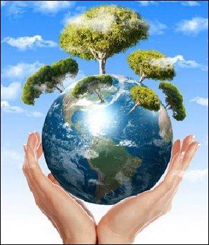 أسباب إختلال التوازن البيئي