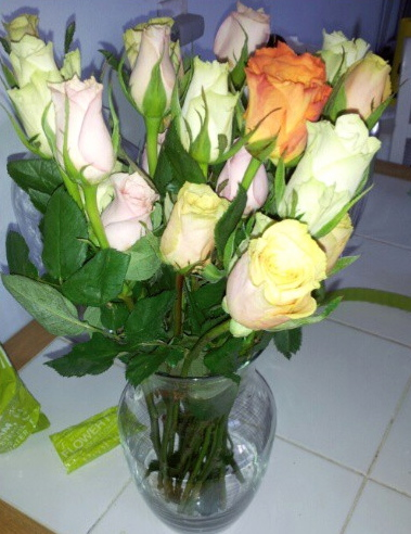Proflowers Review Scammed Jet Set Dhruvi