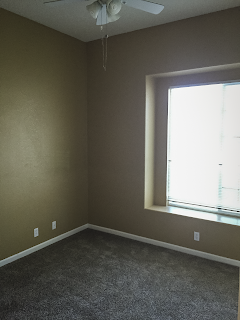 Before photo - corner of office with carpet and old paint color (brownish peach)