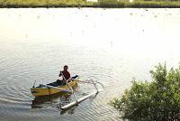 Berwisata Kanoe di kawasan mangrove