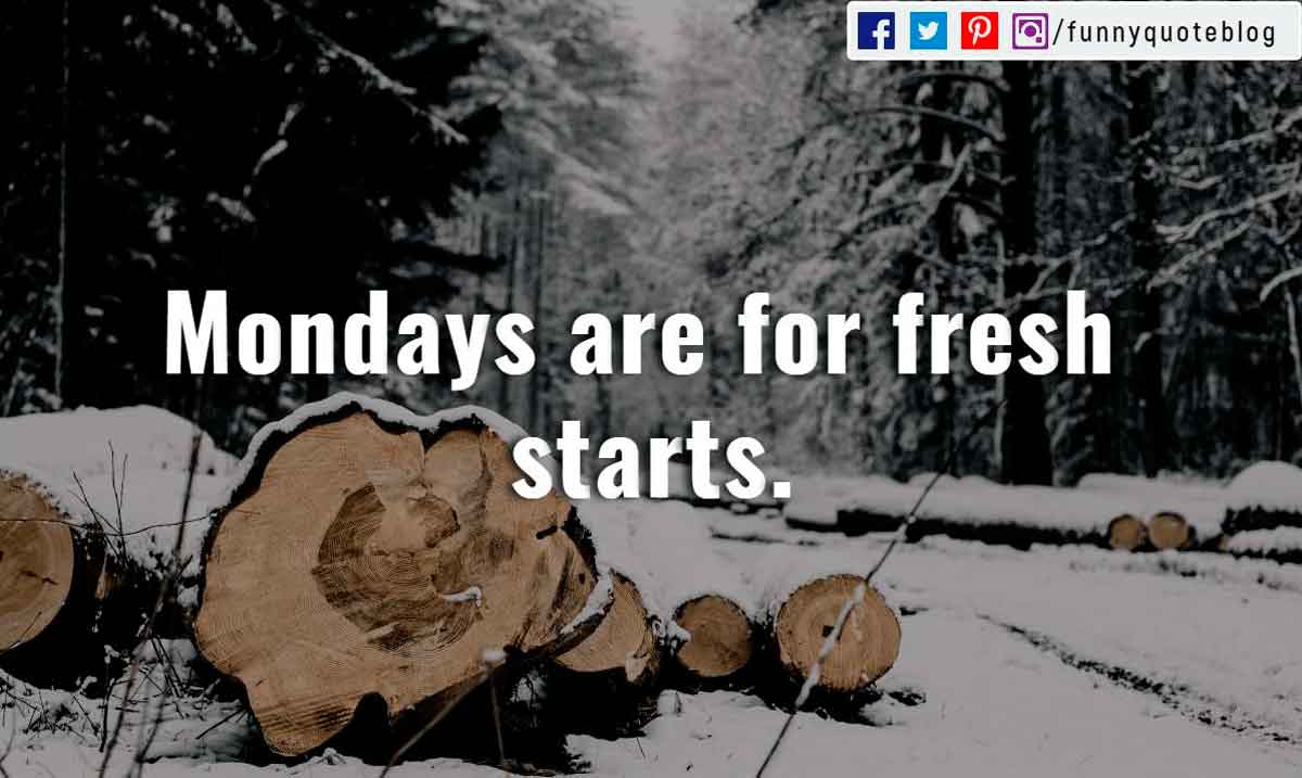"""Mondays are for fresh starts."""
