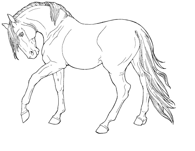 Line Drawings Of Animals  Free Line Artfine Horse In Harpgfoundies