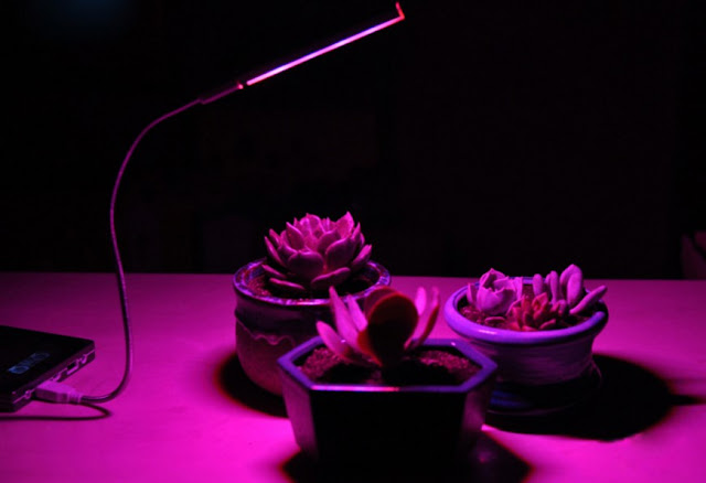 5V 2.5W 10 Red 4 Blue Portable USB LED Plant Grow Lamp for Home Office Garden Greenhouse 1