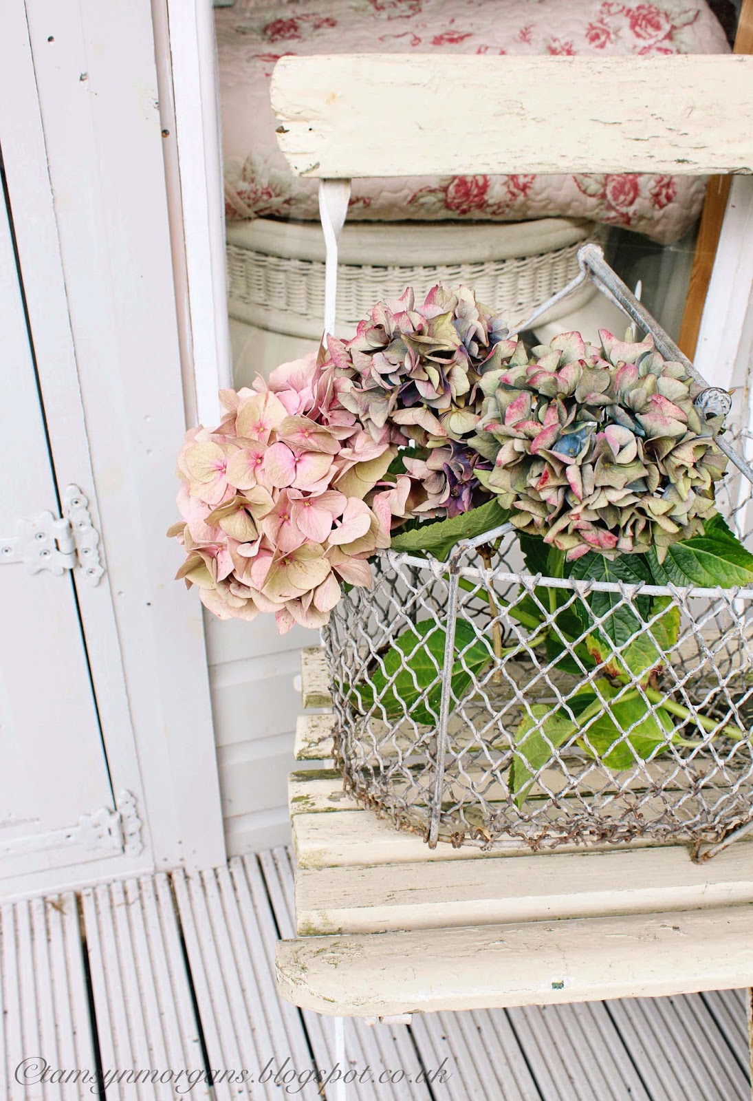 Rustic Garden Chair and Hydrangeas