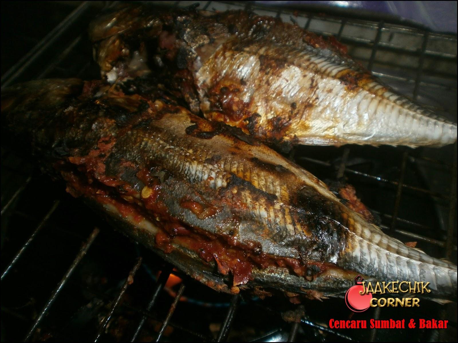 Bakar Ikan Atas Dapur Gas Desainrumahid