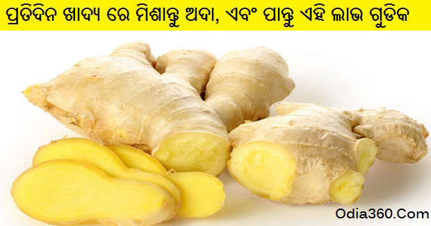 Health Benefits of Ginger - Add Daily with Food and Get These Benefits