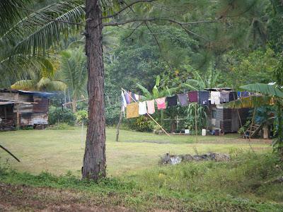 Fijian homes