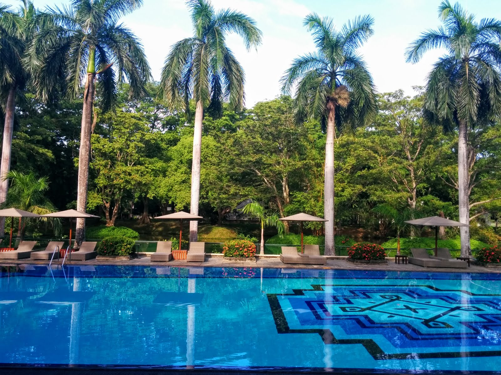 Gorgeous Swimming Pool at Cinnamon Lodge Habarana