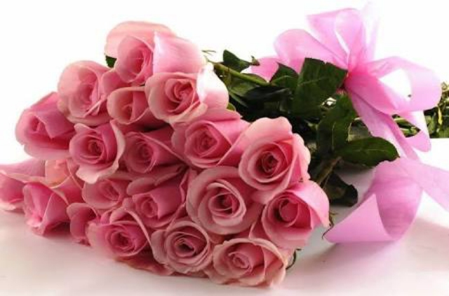 Nice Pink Roses Wallpapers Image