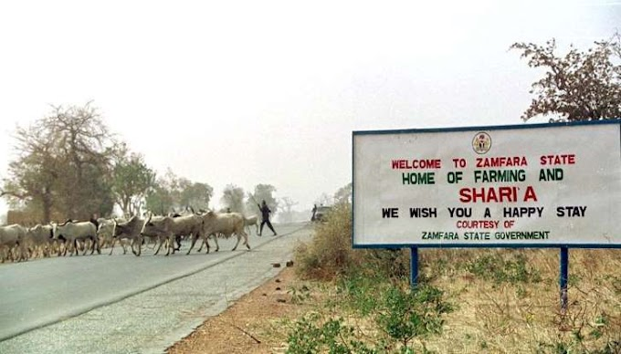 Cattle rustlers kill 23 in northern Nigeria: official
