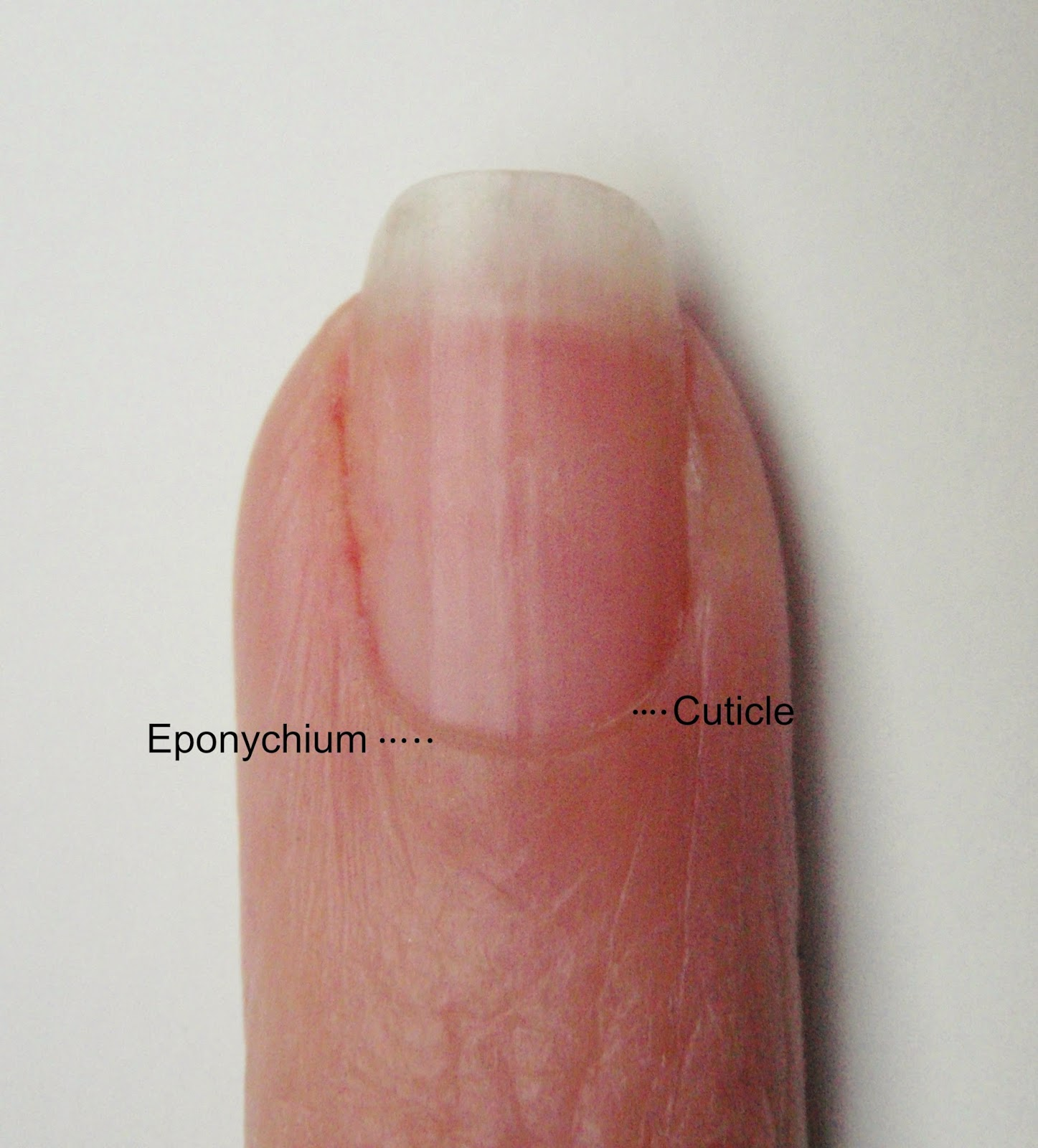 The Juicy Beauty Word: Fraying Cuticles