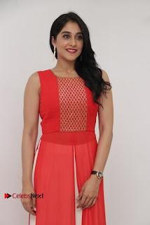 Actress Model Regina Candra Latest Pos in Beautiful Red Dress  0018.jpg