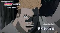 Boruto: Naruto Next Generations Capitulo 100 Sub Español HD