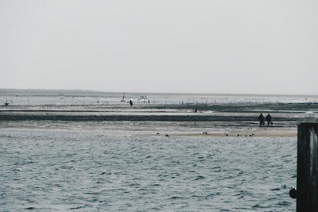 pêche à marée basse Olhão