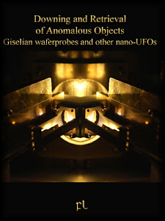 Downing and Retrieval of Anomalous Objects Cover