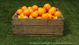 Teach Diversity Using Oranges; Removing the Stumbling Block