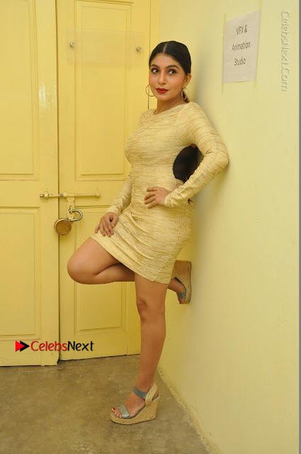 Actress Pooja Roshan Stills in Golden Short Dress at Box Movie Audio Launch  0020.JPG