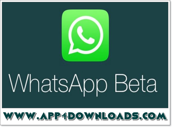 WhatsApp 2.17.343 Beta APK Download For Android