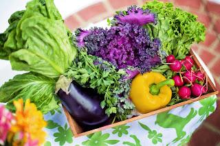 L'intérêt nutritionnel des légumes verts