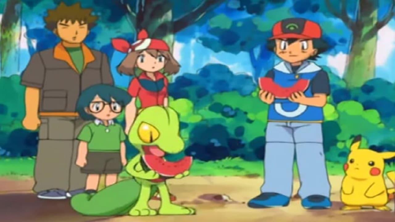Pokemon reto maximo cap 20 2 latino dating