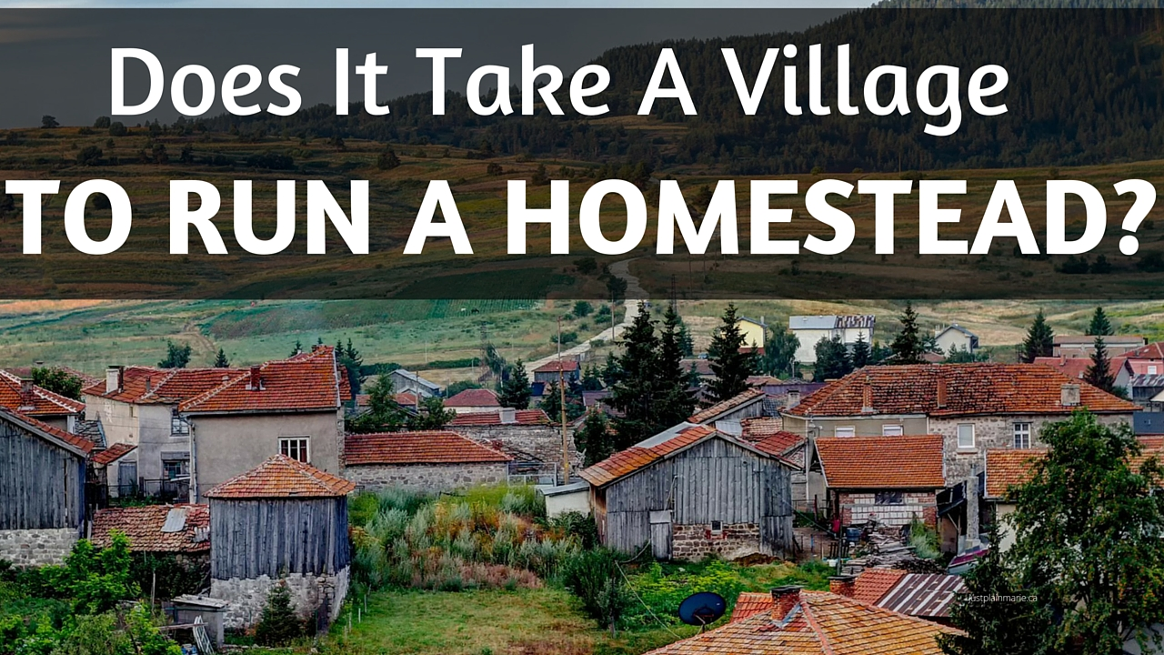 Is homesteading possible without a village to pick up the slack?