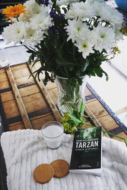 Tarzan seigneur de la jungle livre et film Blog Coin des licornes littéraire lifestyle Toulouse