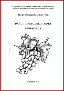 Виноргад