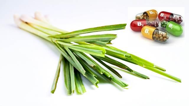 Vitaminas y minerales que aporta la Hierba de limón o Limoncillo