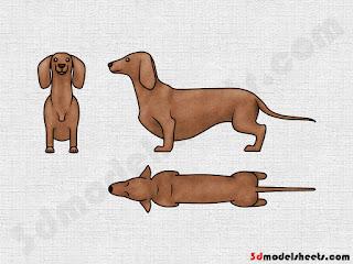 high resolution textures free animal blueprints ampmodel sheets