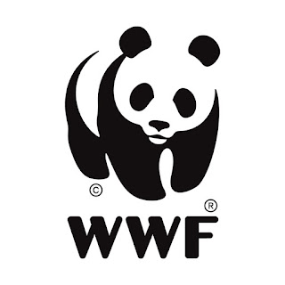 wwf, onsos, osos, bear, Bär