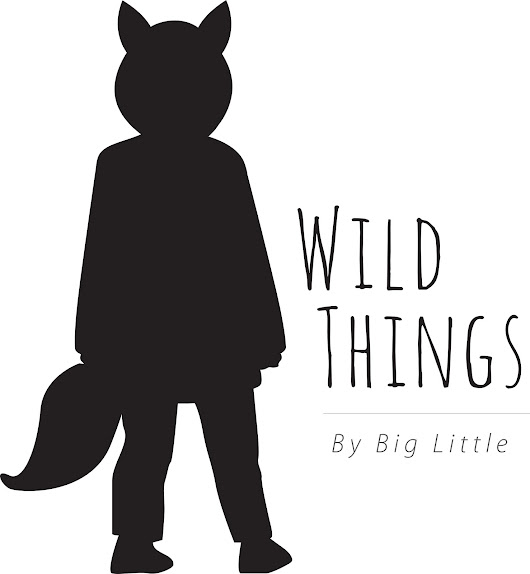 Big Little Wild Things Coat Blog Tour!